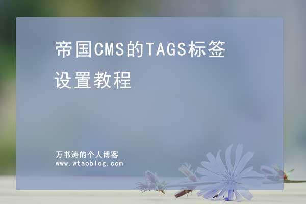 帝国cms的tag标签如何设置图片